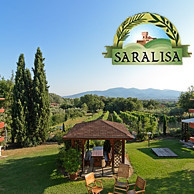 AGRITURISMO SARALISA